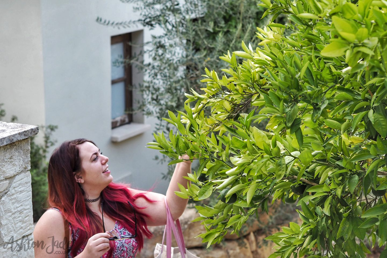 hotel-ayii-anargyri-cyprus-ashton-jade-gardens